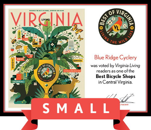Official Best of Virginia 2019 Winner's Plaque, S (9.75