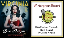 Best of Virginia 2016 Banner<br> (3' x 5')