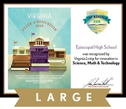 Official State of Education 2018 Winner's Plaque, L (19.75