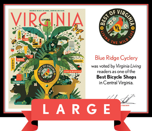 Official Best of Virginia 2019 Winner's Plaque, L (19.75