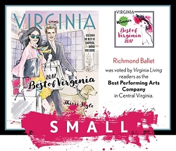 Official Best of Virginia 2017 Winner's Plaque, S (9.75
