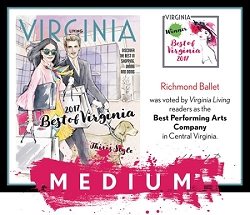 Official Best of Virginia 2017 Winner's Plaque, M (13