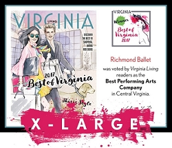 Official Best of Virginia 2017 Plaque, XL (26