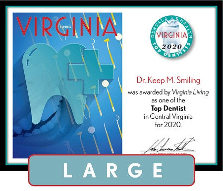 Official Top Dentists 2020 Winner's Plaque, L (19.75