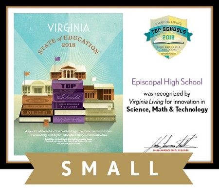 Official State of Education 2018 Winner's Plaque, S (9.75